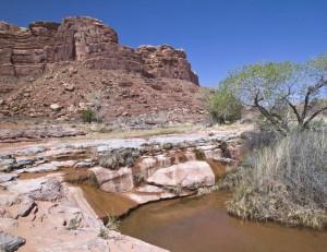 Johns Canyon Water