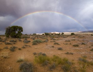 Spring Canyon Rainbow
