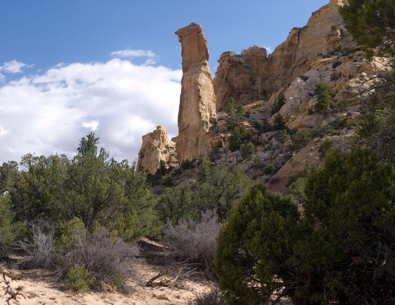 South Fork of Eagle Canyon