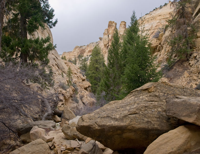 Head of Golden Canyon