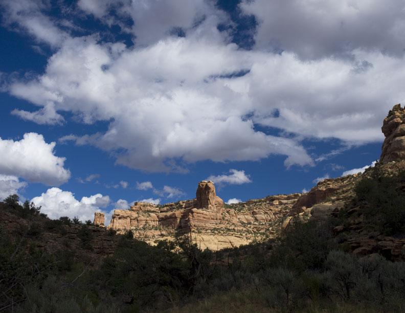 Arch Canyon #1