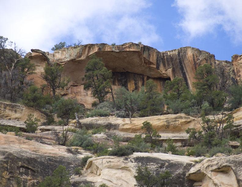 Arch Canyon Rim Arch #1