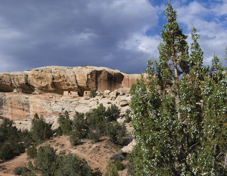 Lower Mule Canyon Ruins