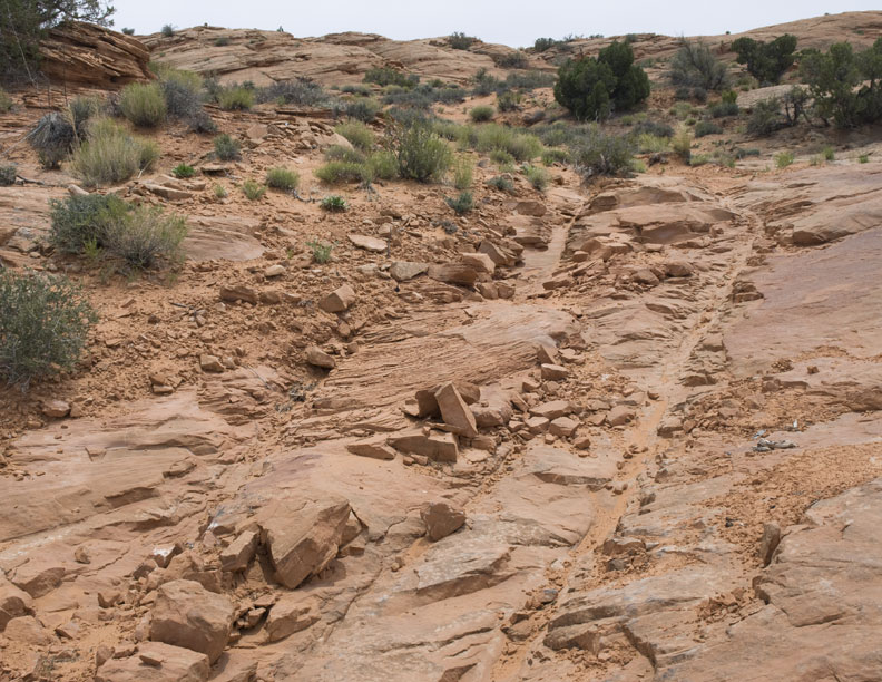 Wagon ruts left in sandstone