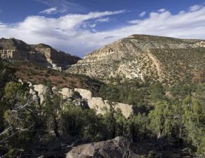 Pleasant Creek Gorge