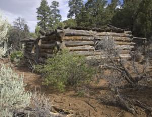 R Allen Cabin