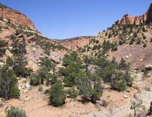 Oak Creek Side Canyon