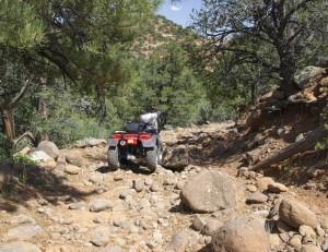 Rosebud Trail