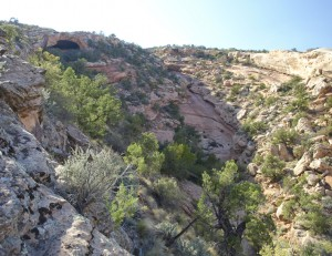 Comb Wash Cave Canyon