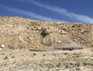 Willow Springs Corral