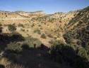 Cat Canyon 3