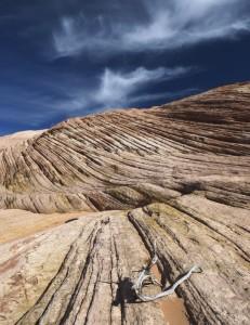 The V Rock Hills 2