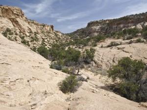 Box Flat Side Canyon