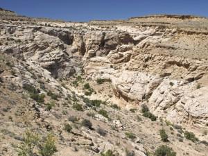 Cottonwood Wash side canyon