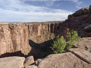 Day Canyon