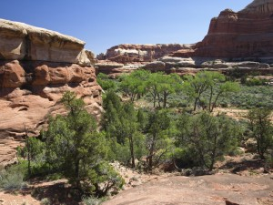 Middle Horse Canyon