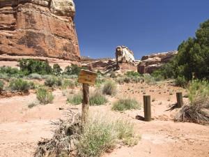 Horse Canyon side canyon