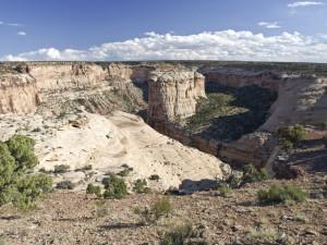 Rincon Canyon