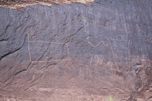 Poison Springs Canyon Petroglyphs