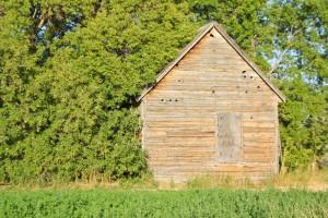 Wellsville Cabin