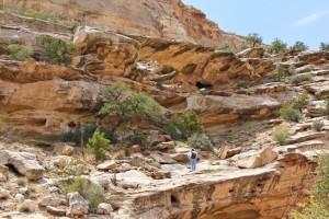 Wild Horse Canyon Arch