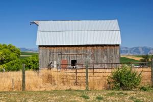 Newton Barn