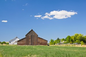 Newton Barns