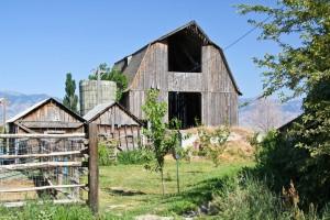 Trenton Barn