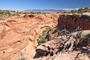 Upper Little Canyon