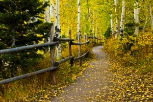 Payson Lakes Trail