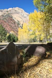 Fall in Sheep Creek Canyon