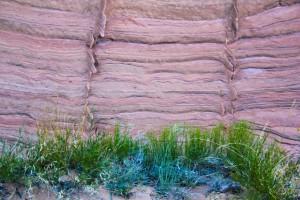 Strata & Grass