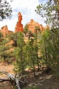 Casto Canyon