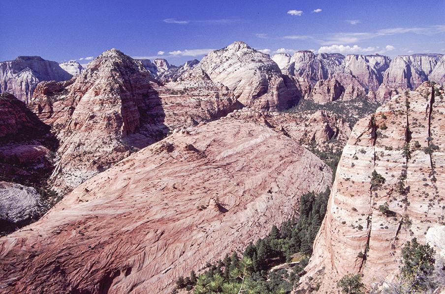 Zion's rare places